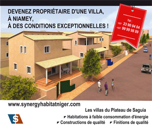 Synergy Investments Niger