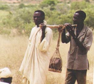 Toungoum Pierre sacree