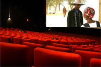 Cinema Niger